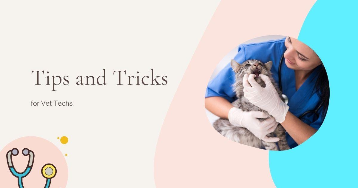 Tips and Tricks for Vet Techs