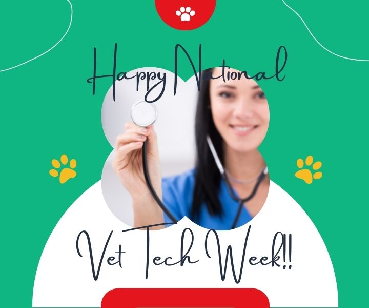 vet tech week