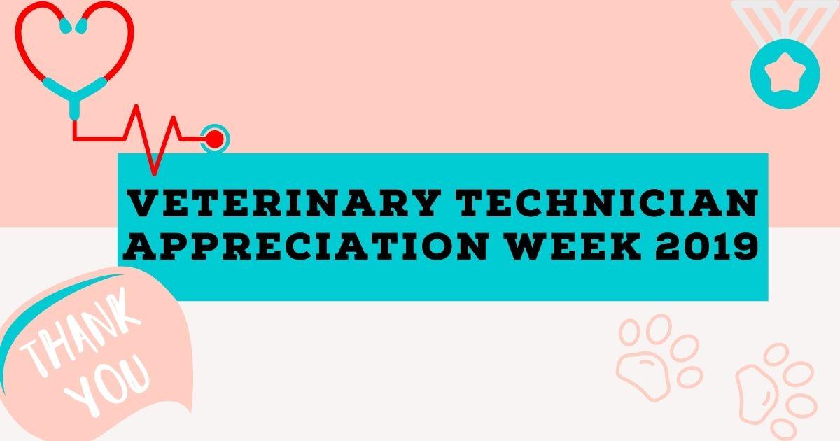 Veterinary Technician Appreciation Week 2019